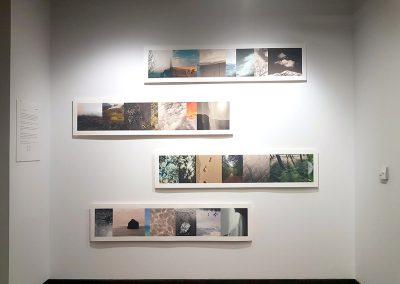 Gloria García. Exposición: Paisajes con-sentidos.